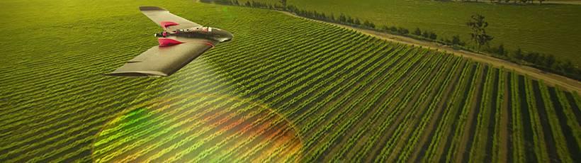 Utilização dos drones para a sustentabilidade agrícola