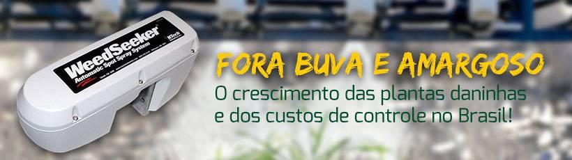 Movimento Fora Buva e Amargoso promove discussão sobre o crescimento de plantas daninhas no Brasil